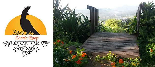 LoerieRoep - Nelspruit accommodation - Mpumalanga